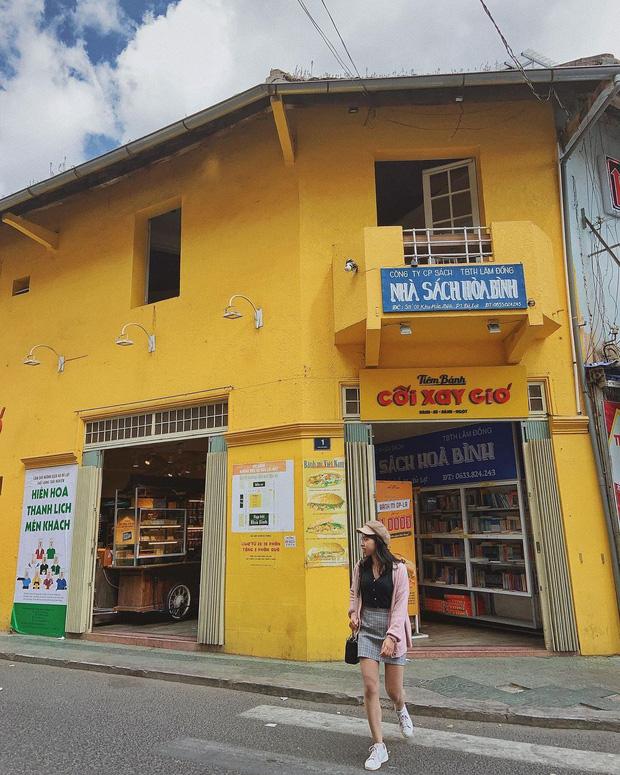 HOT: Bức tường vàng Cối Xay Gió nổi tiếng Đà Lạt đã comeback, địa điểm mới gây bất ngờ cho dân mạng - Ảnh 2.