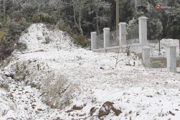 Cặp đôi Hà Nội chụp ảnh cưới giữa trời băng tuyết kỳ ảo ở Y Tý, dân tình trầm trồ: Đỉnh cao săn tuyết là đây - Ảnh 1.