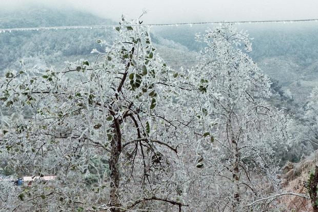 Hội trai xinh gái đẹp tung ảnh check in tuyết ở Y Tý, Sa Pa đẹp hú hồn, không ngờ Việt Nam mình cũng có những nơi thế này! - Ảnh 15.