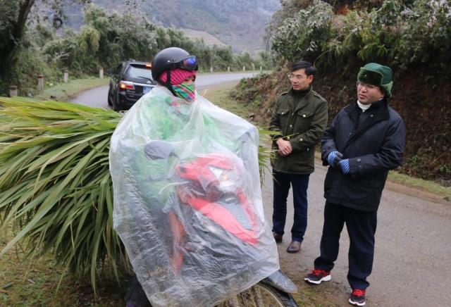 Băng và tuyết rơi làm hơn 300 trâu bò chết rét, người dân dùng xe máy chở về  - Ảnh 2.