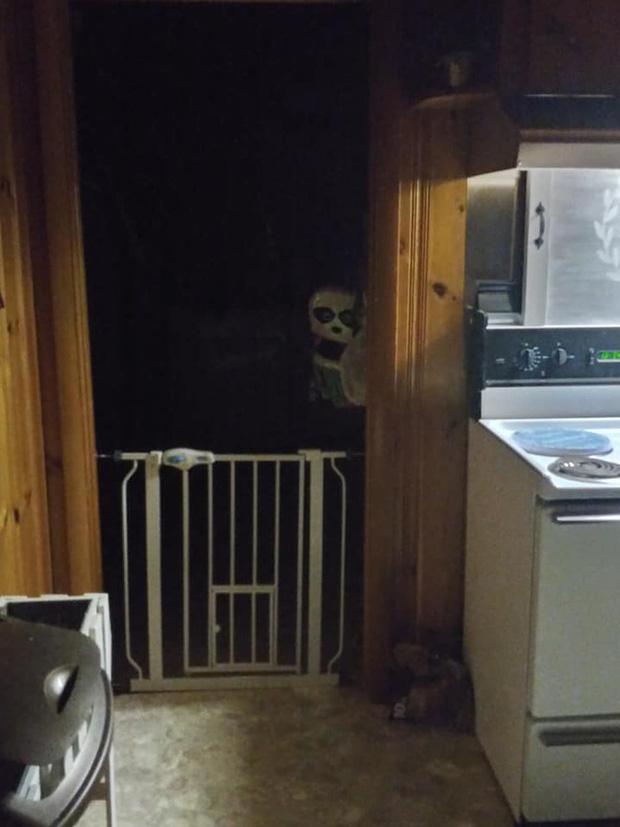 Nửa đêm lọ mọ vào bếp uống nước, người đàn ông bủn rủn chân tay vì ngỡ ma quỷ ghé thăm nhà, bật điện lên mới rõ ngọn ngành - Ảnh 1.