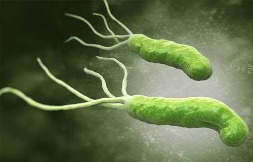 13 tuổi đã ung thư dạ dày: Cẩn thận với loại vi khuẩn có thể lây khi ăn chung mâm, chung bát - Ảnh 1.