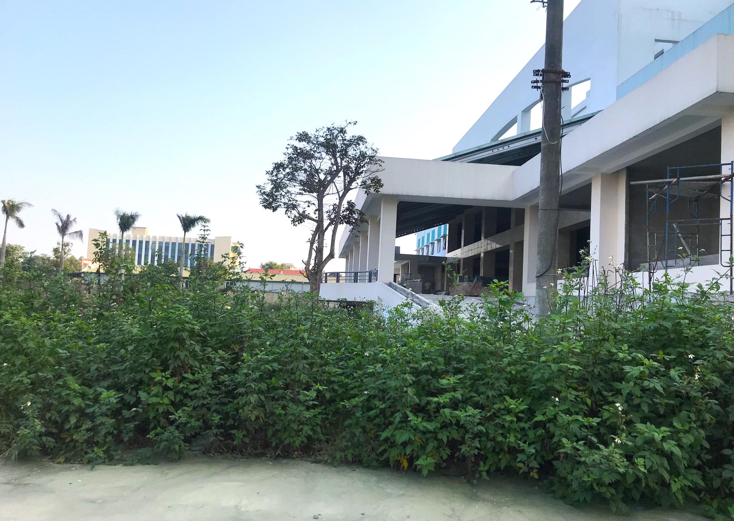 Cảnh nhếch nhác, cỏ mọc um tùm trong dự án bệnh viện nghìn tỷ lớn nhất Bắc Trung Bộ - Ảnh 5.