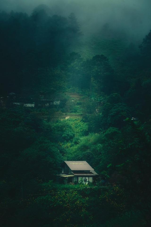 Chàng trai bỏ du học về Đà Lạt dựng ngôi nhà gỗ xinh xắn, làm nông trại và kể câu chuyện thời thanh xuân của riêng mình - Ảnh 21.
