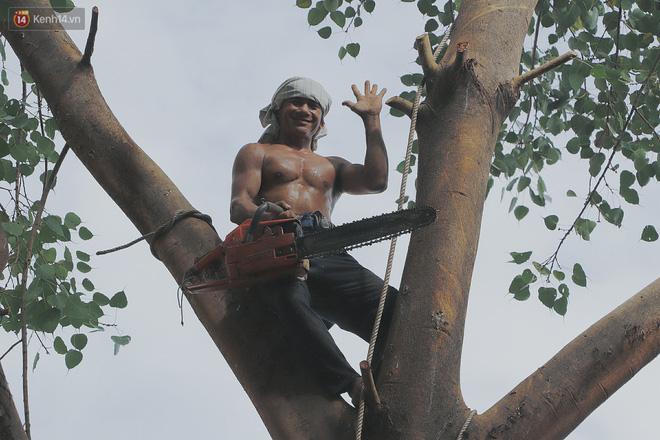 Gặp vua khỉ U50 ở miền Tây: 27 năm thích leo trèo, dù bị ong chích, kiến đốt đến phát sốt vẫn thấy bình thường - Ảnh 4.