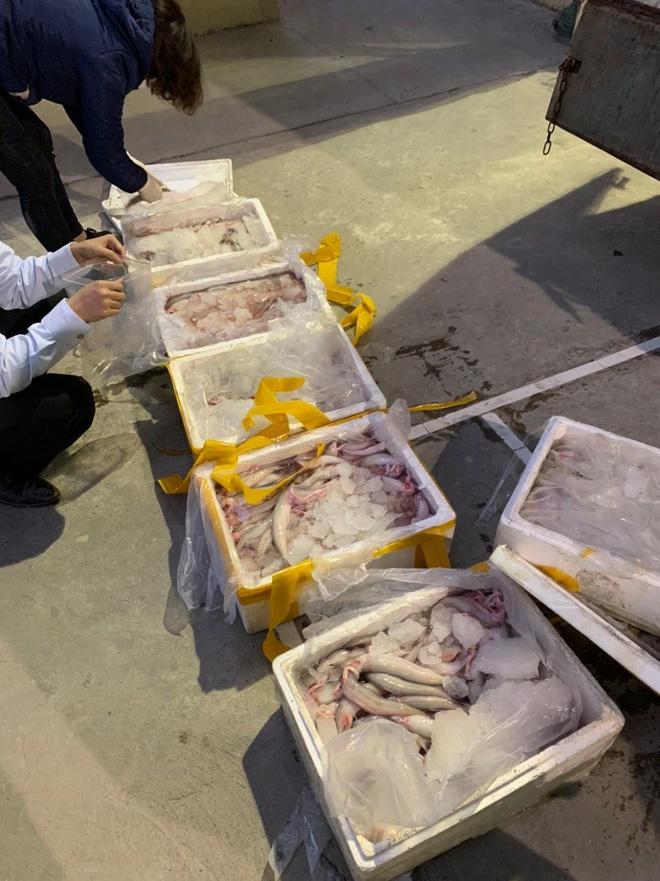 Ớn lạnh 250kg cá khoai ướp phoóc môn suýt lên bàn ăn - Ảnh 3.