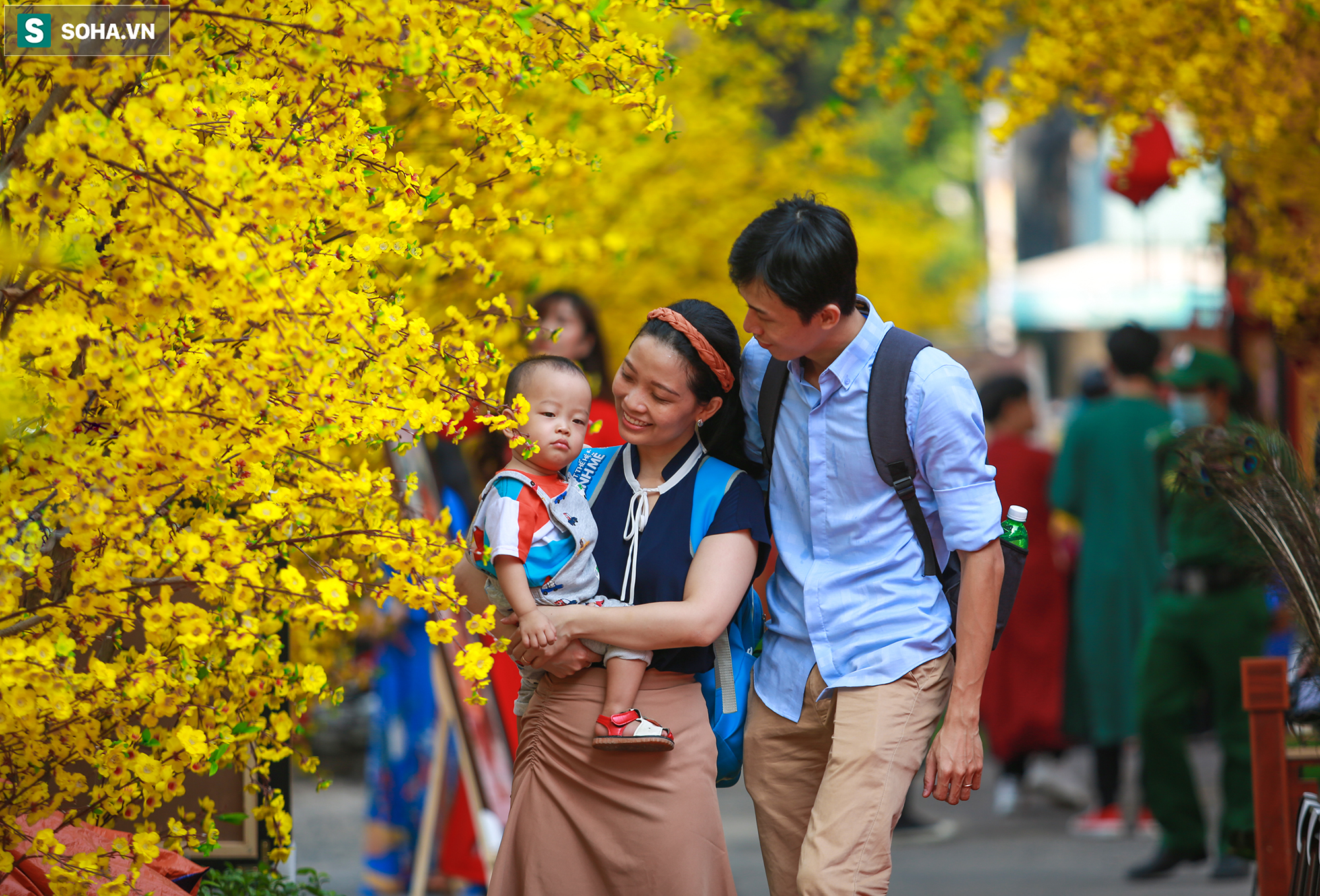 [Ảnh] Thiếu nữ Sài Gòn xinh đẹp xúng xính áo dài check-in sống ảo ở con đường hoa mai - Ảnh 15.