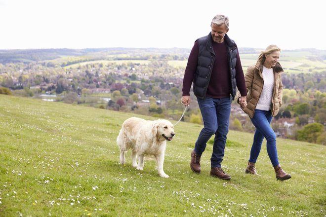 Làm thêm một động tác khi đi bộ có thể giúp tim khỏe hơn: Đặc biệt tốt cho tuổi trung niên - Ảnh 2.
