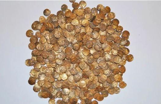 Lão nông sở hữu triệu USD sau khi đào được kho tiền vàng trên ruộng - Ảnh 1.