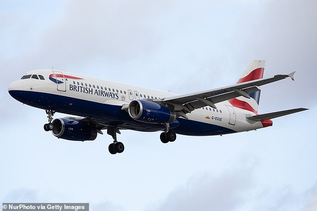 Đôi bạn thân bám càng máy bay đi 9000km để đến miền đất hứa bất chấp nhiệt độ -60 độ C và cái kết một mất một còn - Ảnh 3.