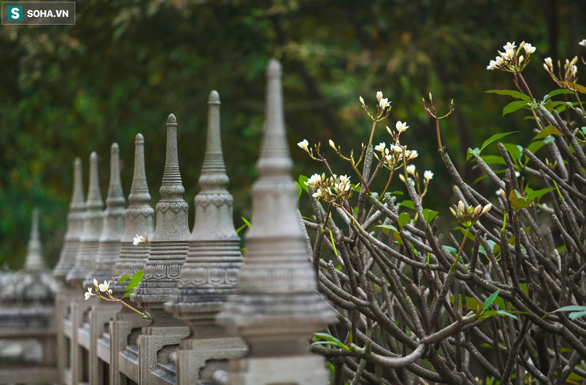 [Ảnh] Ngắm vẻ đẹp huyền bí của ngôi chùa lọt top đẹp nhất thế giới tọa lạc tại TP.Thủ Đức - Ảnh 12.