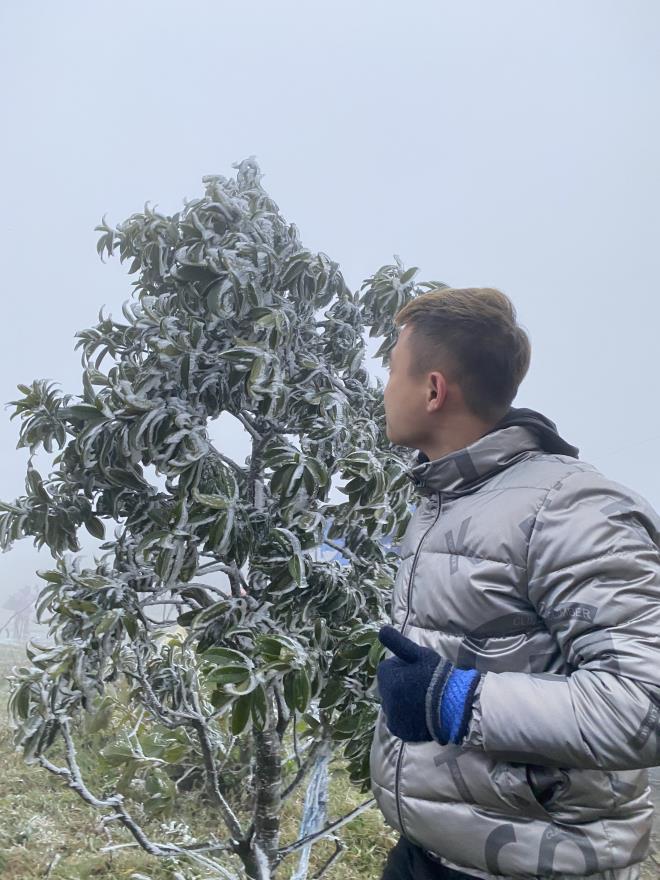 Cận cảnh băng giá phủ trắng đỉnh Mẫu Sơn, Yên Tử, Phia Oắc, du khách thích thú chụp ảnh - Ảnh 9.