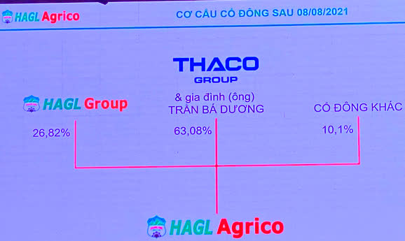 Ông Trần Bá Dương: Làm nông nghiệp nói chung và làm Chủ tịch HAGL Agrico nói riêng, với tôi là bất đắc dĩ!  - Ảnh 1.