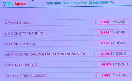 Ông Trần Bá Dương: Làm nông nghiệp nói chung và làm Chủ tịch HAGL Agrico nói riêng, với tôi là bất đắc dĩ!  - Ảnh 2.