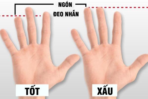 Một số đặc điểm trên cơ thể ngầm tiết lộ khả năng tình dục của chàng - Ảnh 4.