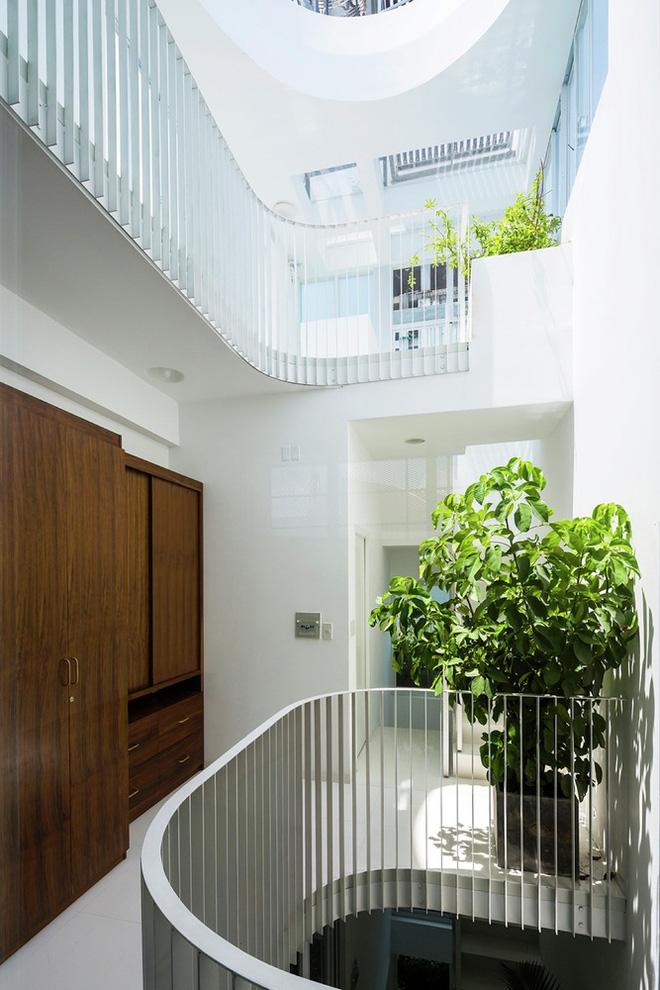 Gia đình trẻ ở Sài Gòn sống trong căn nhà 42m2 có giếng trời chữ D uốn cong cực đã, càng lên cao càng phải trầm trồ - Ảnh 5.