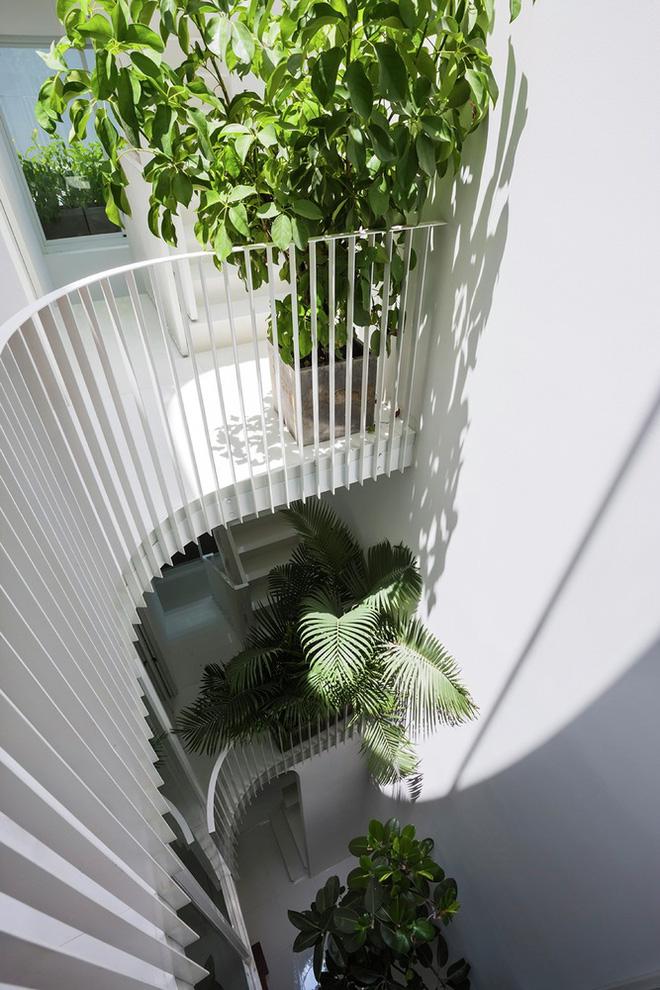 Gia đình trẻ ở Sài Gòn sống trong căn nhà 42m2 có giếng trời chữ D uốn cong cực đã, càng lên cao càng phải trầm trồ - Ảnh 7.