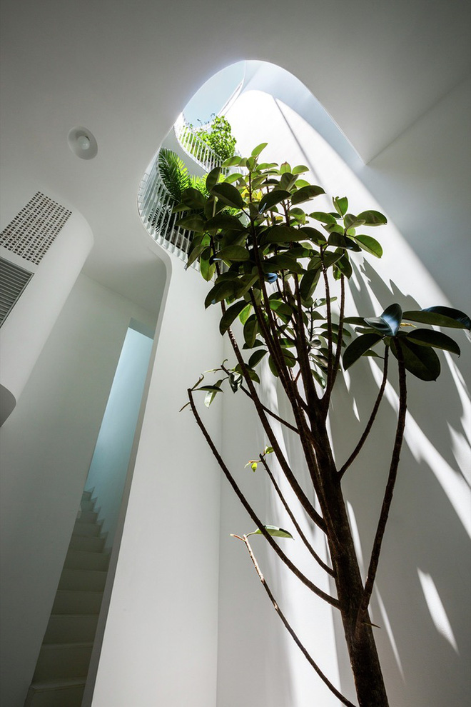 Gia đình trẻ ở Sài Gòn sống trong căn nhà 42m2 có giếng trời chữ D uốn cong cực đã, càng lên cao càng phải trầm trồ - Ảnh 8.
