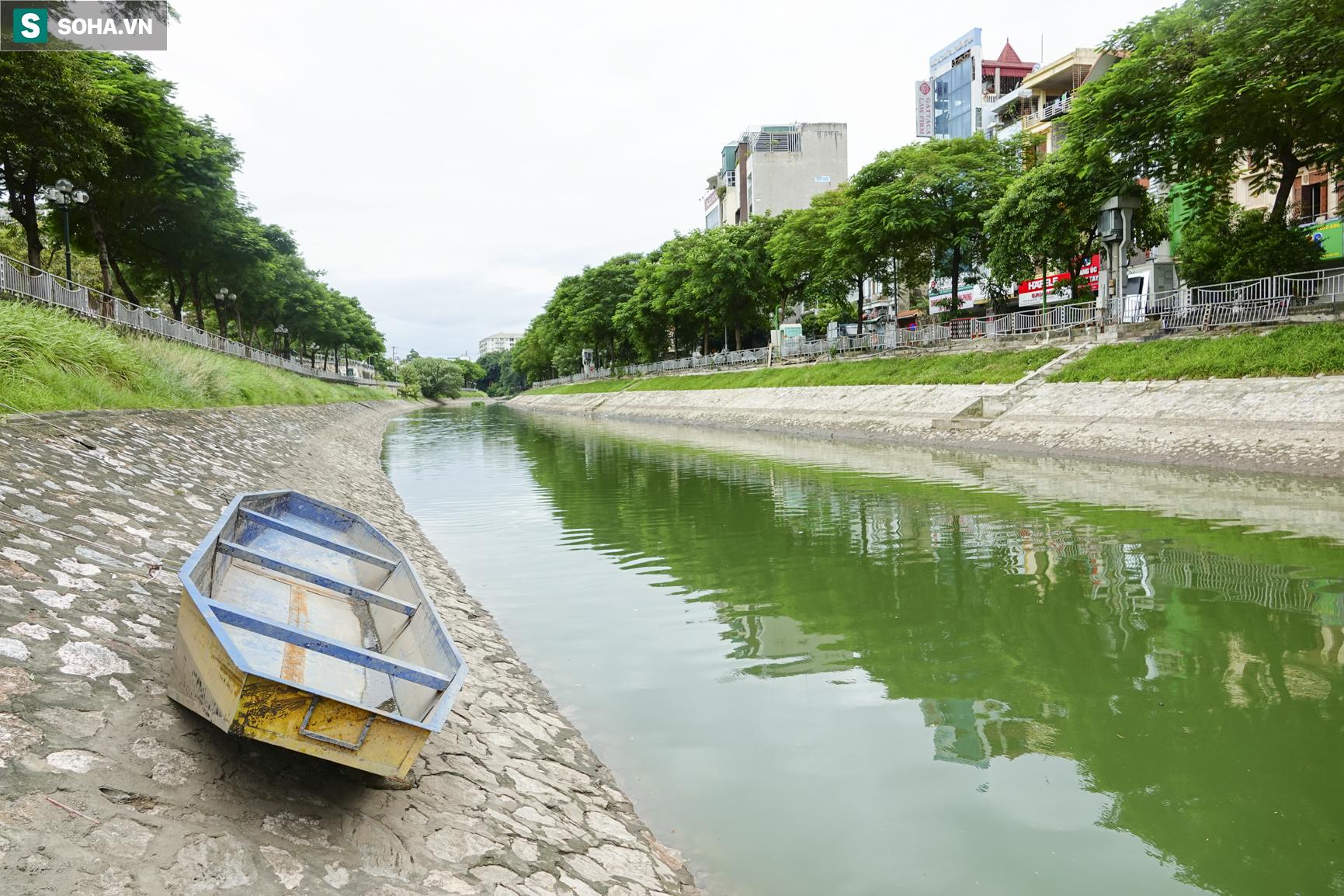 Nước sông Tô Lịch bỗng chuyển màu xanh ngắt hiếm thấy, người dân hân hoan bắt hàng tạ cá - Ảnh 12.