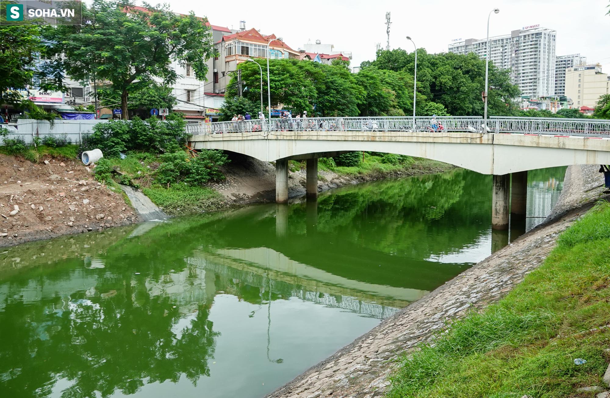 [ẢNH] Cận cảnh dòng nước xanh ngắt hiếm thấy tại sông Tô Lịch, cá bơi nhộn nhịp hàng đàn - Ảnh 3.