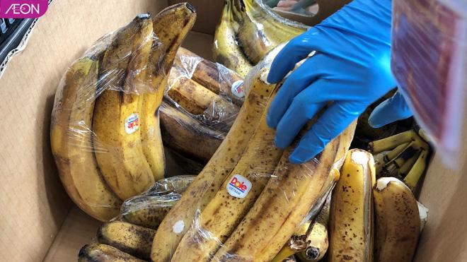 Thảo Cầm Viên Sài Gòn được AEON Việt Nam hỗ trợ thực phẩm cho bầy thú: 2 đợt/tuần, mỗi đợt khoảng 200kg - Ảnh 3.