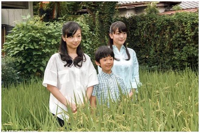 Công chúa Nhật khiến dân chúng buồn lòng vì cưới thường dân: Từng là viên ngọc quý được yêu mến giờ chỉ thấy gượng cười mỗi lần xuất hiện - Ảnh 4.