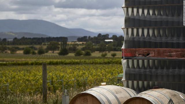 Đây là cách Trung Quốc tàn phá ngành công nghiệp rượu vang trị giá hàng tỷ USD của Australia - Ảnh 5.