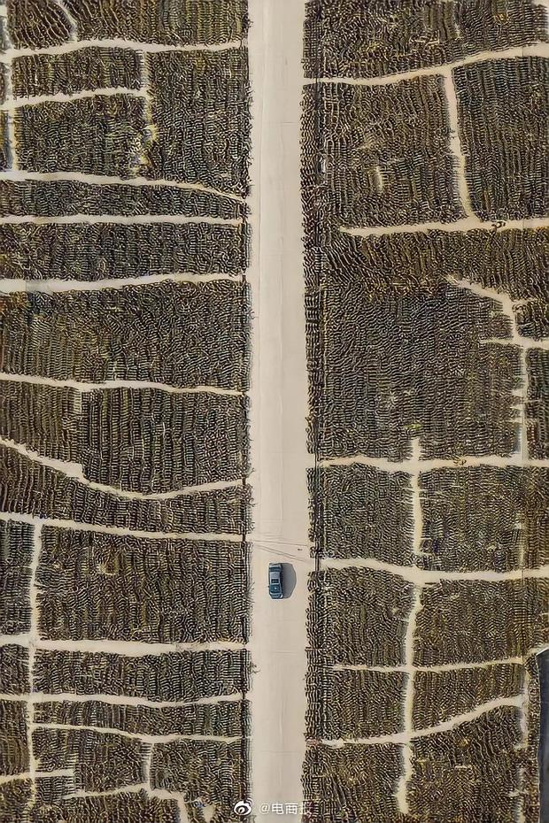 Hoa mắt chóng mặt với nghĩa trang xe thây ma ở Trung Quốc: Hơn 500 nghìn chiếc xe máy điện chơ vơ giữa lòng thành phố - Ảnh 4.