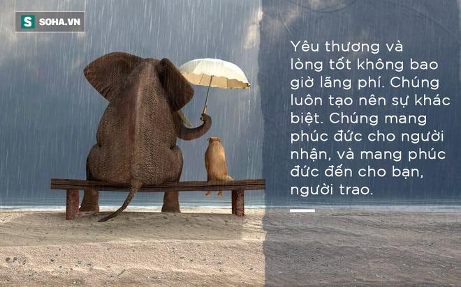 Đời người chỉ cần có được 8 thứ này, cuộc sống sẽ an yên, viên mãn đến già: Hãy xem bạn đã có bao nhiêu thứ! - Ảnh 2.