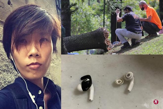 Bị cây đè chết khi đeo tai nghe chống ồn chạy bộ buổi sáng - Ảnh 1.