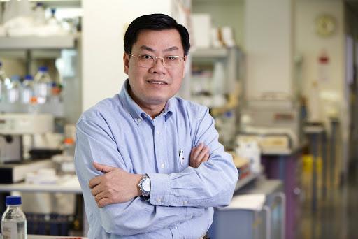 GS Nguyễn Văn Tuấn: 2 câu hỏi lớn kể cả khi có vaccine Covid-19, và câu trả lời đều là Không! - Ảnh 1.