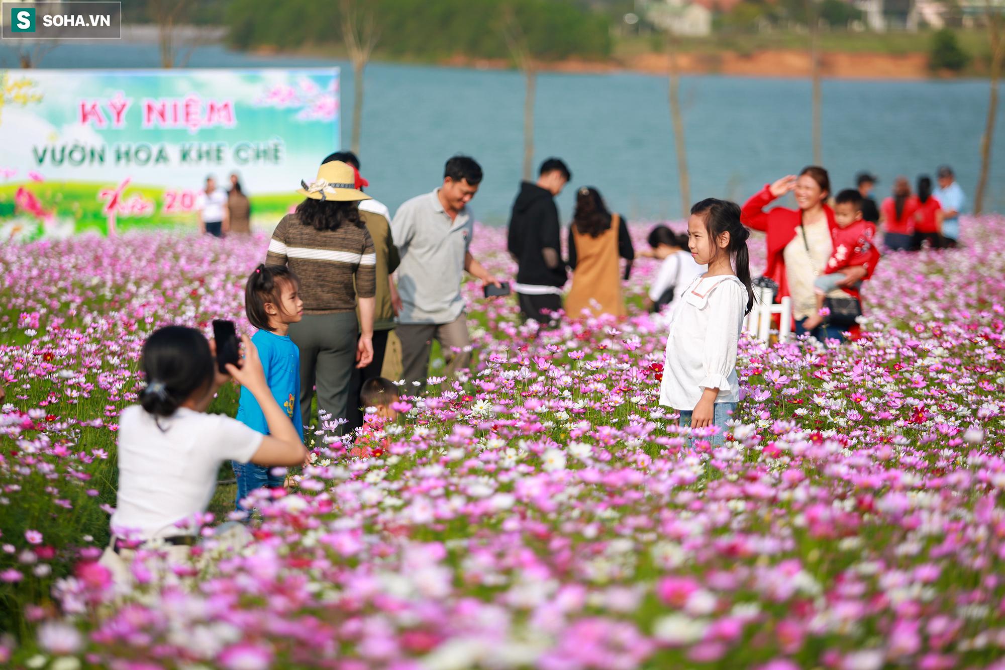Mê mẩn cánh đồng hoa sao nhái đầy màu sắc được giới trẻ săn tìm để check-in ở Quảng Bình - Ảnh 15.