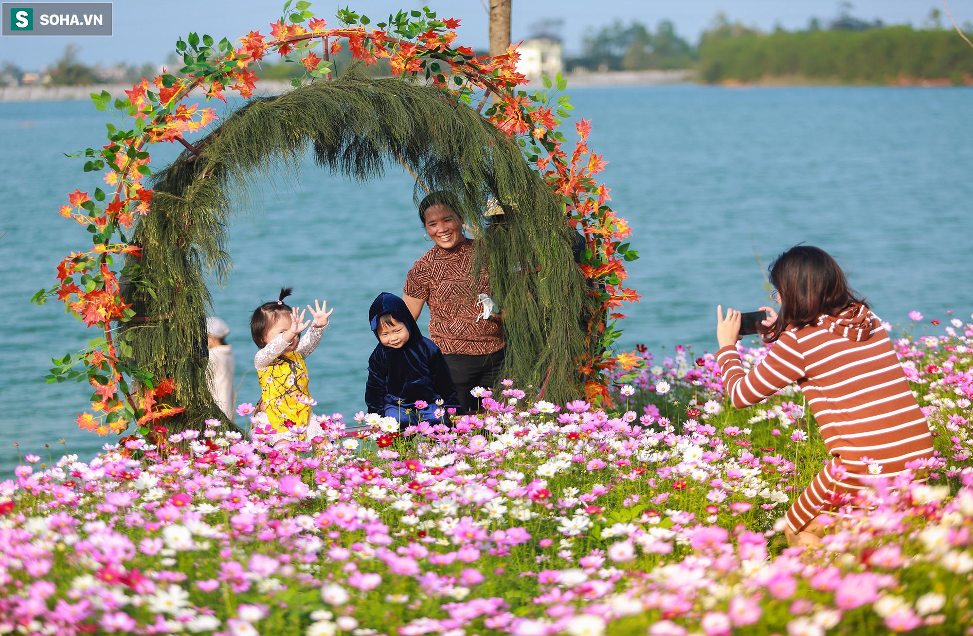 Mê mẩn cánh đồng hoa sao nhái đầy màu sắc được giới trẻ săn tìm để check-in ở Quảng Bình - Ảnh 13.