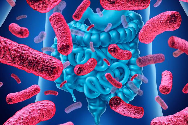 Hơn 140.000 loài virus đang sống trong ruột người, một nửa số này chưa từng được biết đến trước đây - Ảnh 1.