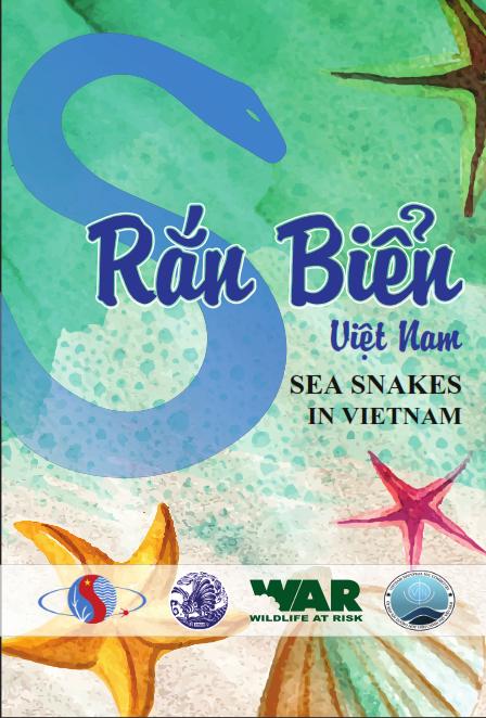 Loài rắn độc nhất Việt Nam: Cạp nong, cạp nia hay hổ mang chúa cũng không có cửa - Ảnh 6.