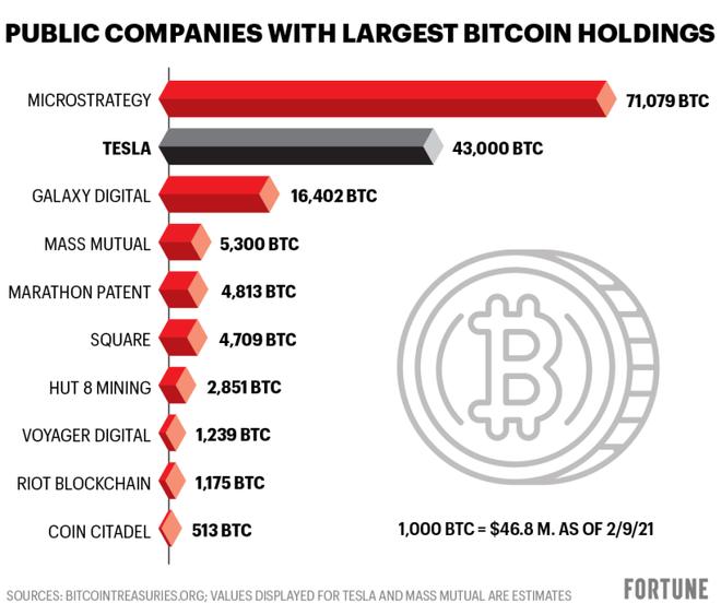 Không phải Tesla, đây mới là cá mập đang nắm giữ lượng Bitcoin nhiều nhất trên thế giới - Ảnh 1.