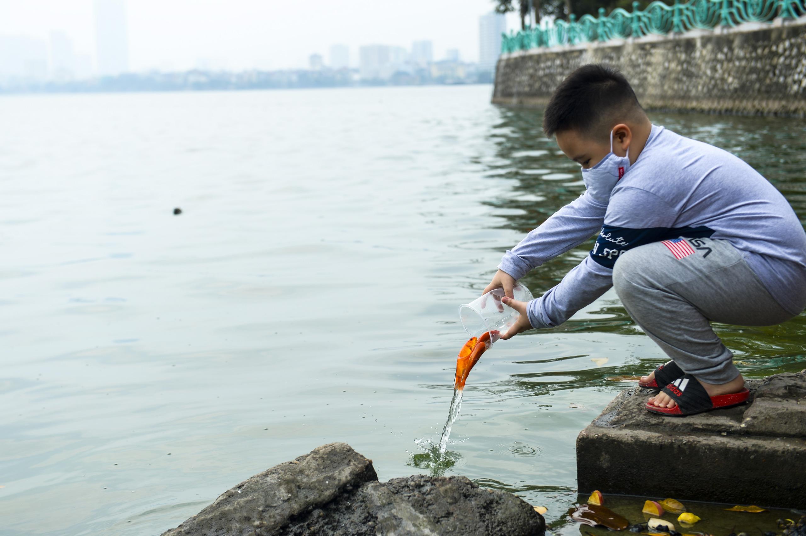 Người phụ nữ thả 3 con cá chép nặng gần 3kg xuống Hồ Tây tiễn ông Công, ông Táo về trời sớm - Ảnh 2.