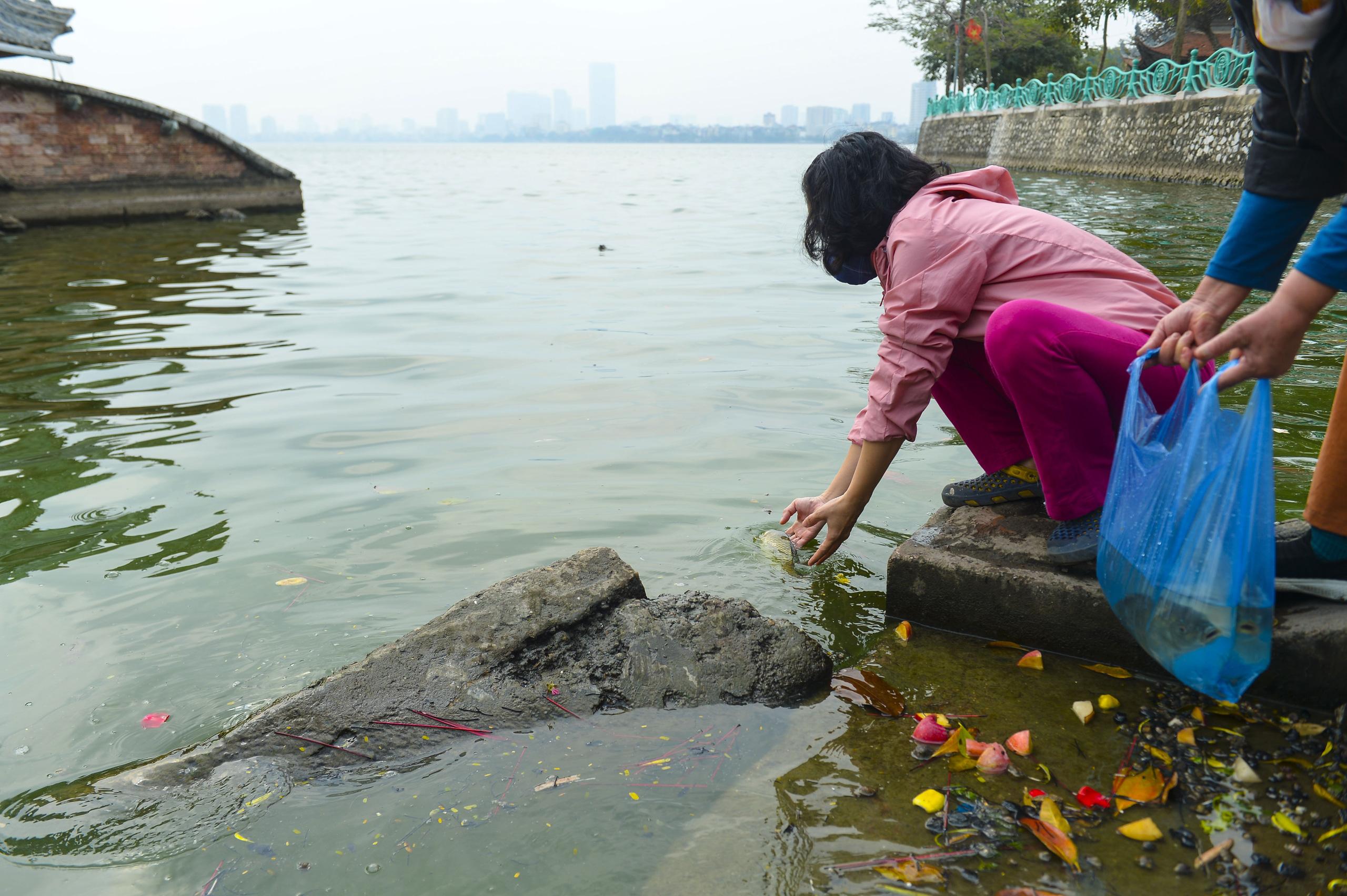 Người phụ nữ thả 3 con cá chép nặng gần 3kg xuống Hồ Tây tiễn ông Công, ông Táo về trời sớm - Ảnh 5.