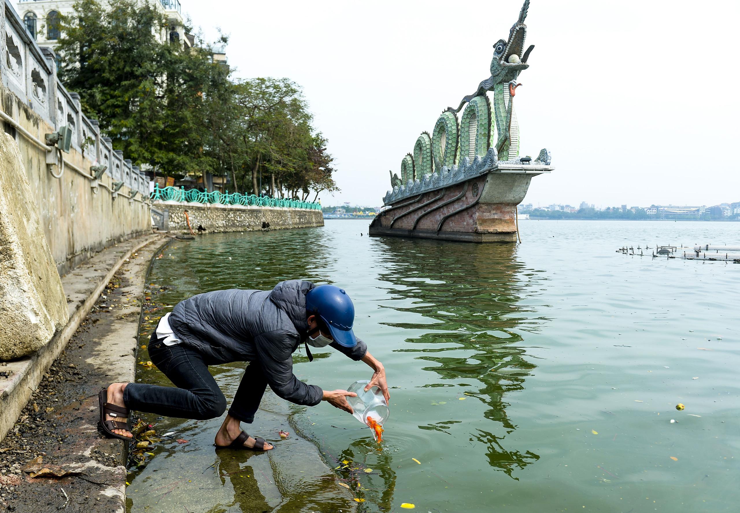 Người phụ nữ thả 3 con cá chép nặng gần 3kg xuống Hồ Tây tiễn ông Công, ông Táo về trời sớm - Ảnh 1.