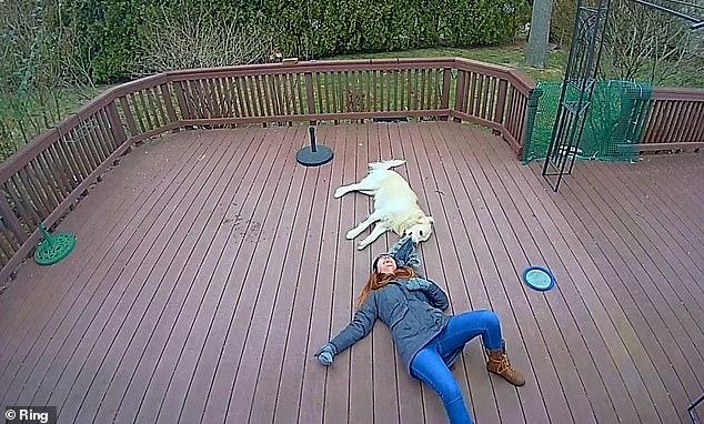Chú chó giằng co áo kéo lê làm ngạt thở cô gái, ngỡ tai nạn đẫm máu kinh hoàng nhưng sự thật không như mọi người nghĩ - Ảnh 5.