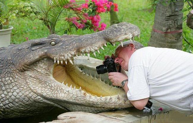 Khi các nhiếp ảnh gia tấu hài khiến chúng ta phải ngã ngửa - Ảnh 7.