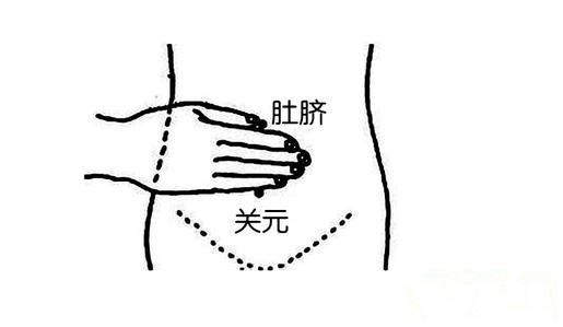 Huyệt quan nguyên: Kho lưu trữ nguyên khí gốc của cơ thể - bồi thận, bổ khí, hồi dương - Ảnh 3.