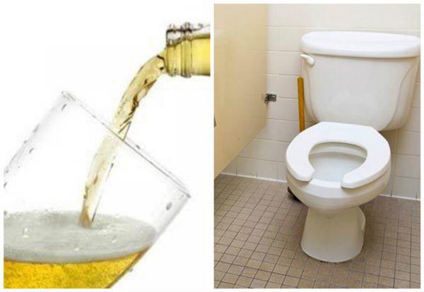 Thấy bia thừa chớ vội đổ đi, áp dụng mẹo vặt này cả nhà sáng như mới - Ảnh 1.