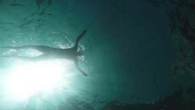 Hội chứng sợ biển Thalassophobia: Nỗi ám ảnh không thể lý giải với đại dương - Ảnh 7.