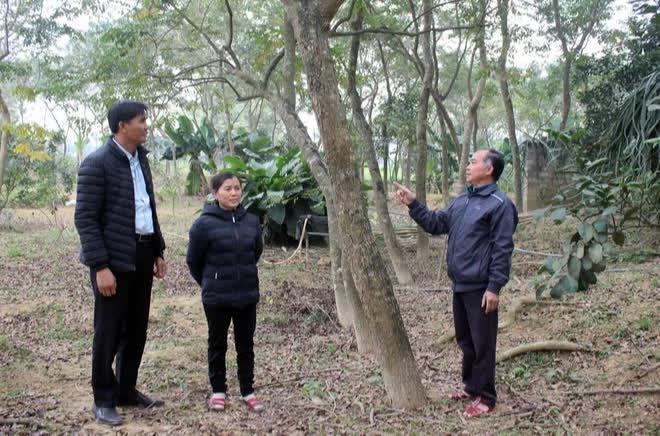 Một xã ở Việt Nam, nông dân chôn vàng ròng dưới đất, ra ngõ là gặp tỷ phú - Ảnh 2.