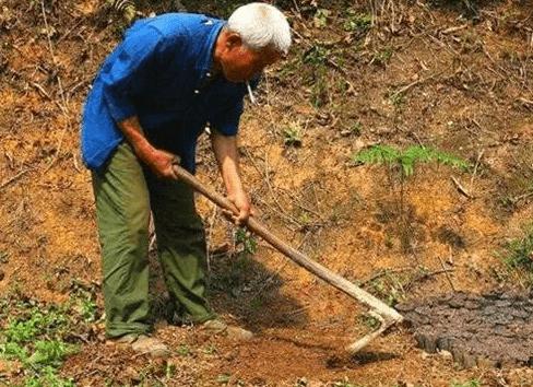 TQ: Nông dân tìm thấy 60kg vàng dưới giếng, dưới lòng đất vẫn còn 200 tấn? - ảnh 1