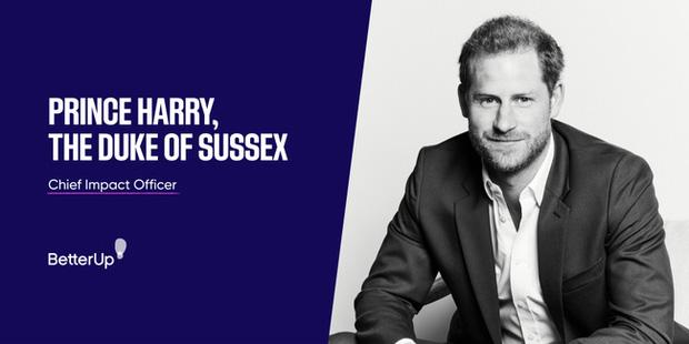 Hậu drama Hoàng gia Anh, Harry kiếm được công việc Giám đốc tại thung lũng Silicon nhưng bị chuyên gia nhận định thiếu khôn ngoan - Ảnh 2.