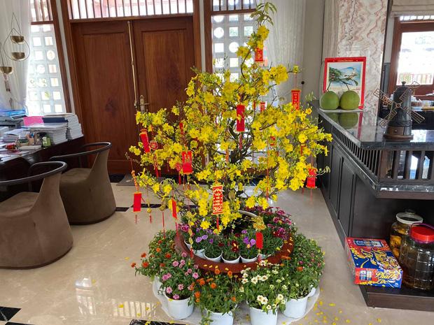 Biệt thự của Quý Bình và bà xã doanh nhân: Hoa phủ kín lối đi, mảnh vườn lớn là ao ước của nhiều người - Ảnh 10.