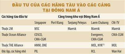 Không dễ để Cái Mép - Thị Vải cạnh tranh với Singapore - Ảnh 1.