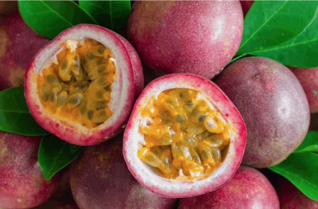 3 loại quả ở Việt Nam mọc dại đầy đường, sang nước ngoài thành của ngon vật lạ bán trong siêu thị gần 1 triệu đồng/kg - Ảnh 5.